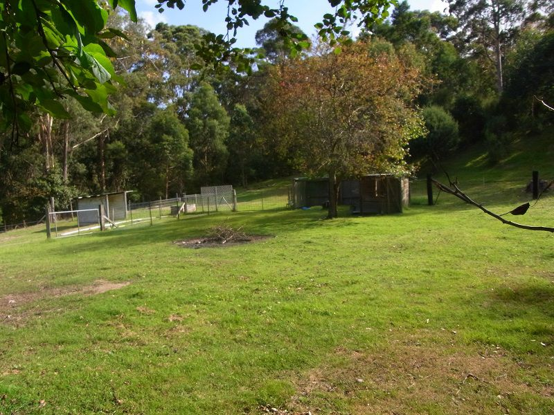 Photo of 474 Towamba Road, Via EDEN NULLICA, NSW 2551