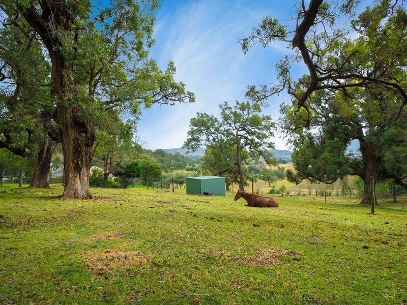 Photo of 169 Blackrange Road BEGA, NSW 2550