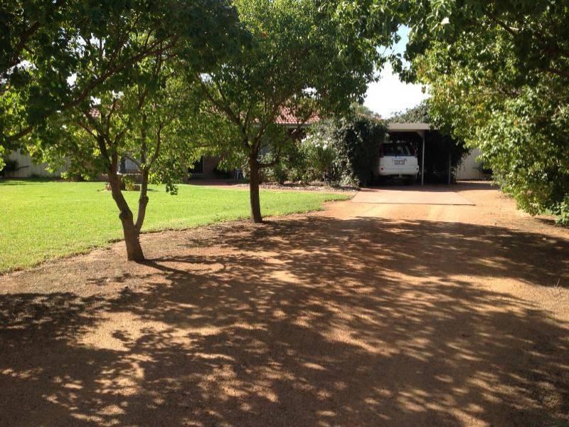 Photo of 181 MINORE STREET NARROMINE, NSW 2821