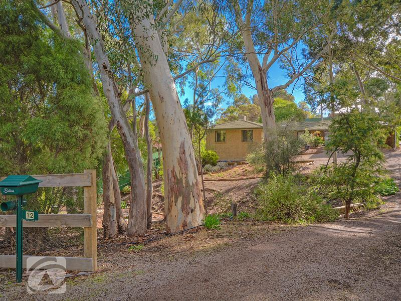 Picture of 12 Treetop Street, Tea Tree Gully