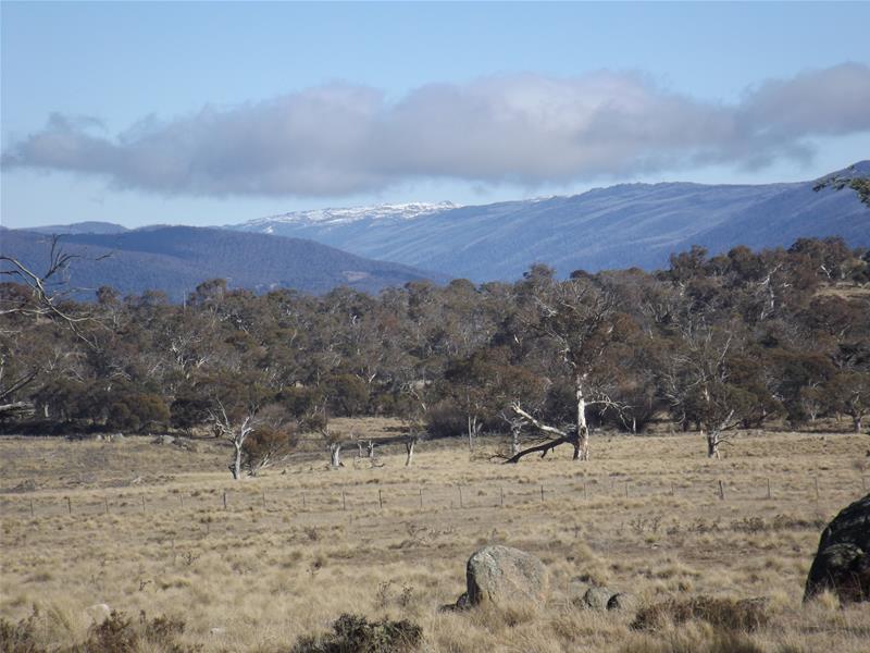 Photo of Lot 1 Tirriki Lane Jindabyne, NSW 2627