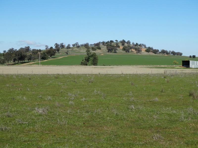 Photo of 133 Jennings Road Culcairn, NSW 2660