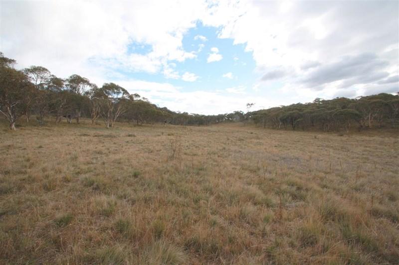 Photo of Lot 191 Stoney Creek Road BERRIDALE, NSW 2628