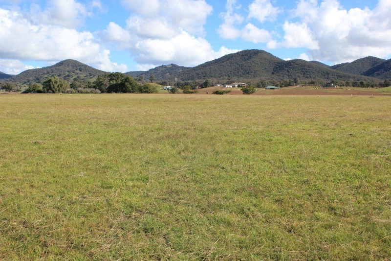 Picture of Mudgee