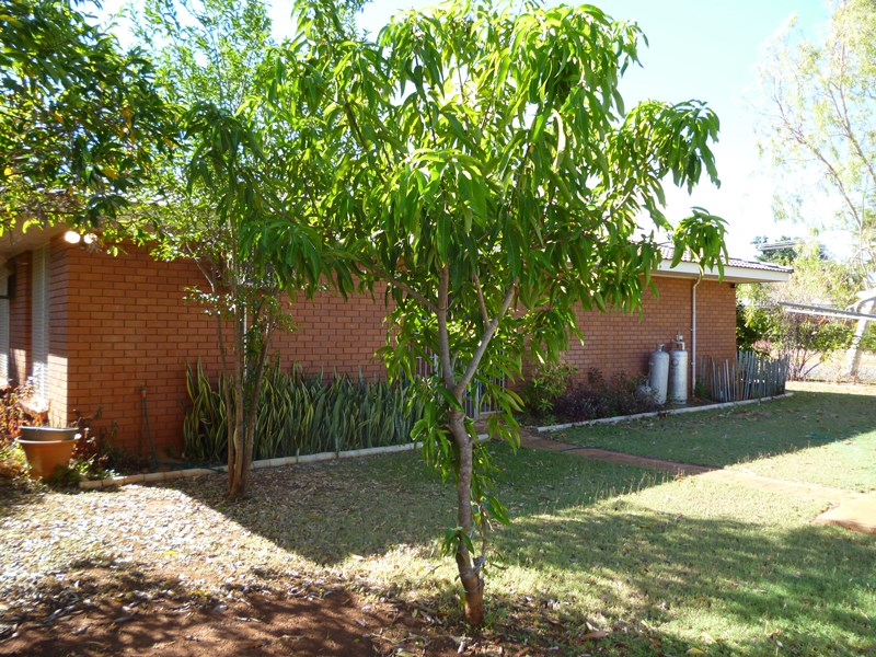 Photo of 1 Holtze Crescent KATHERINE, NT 850