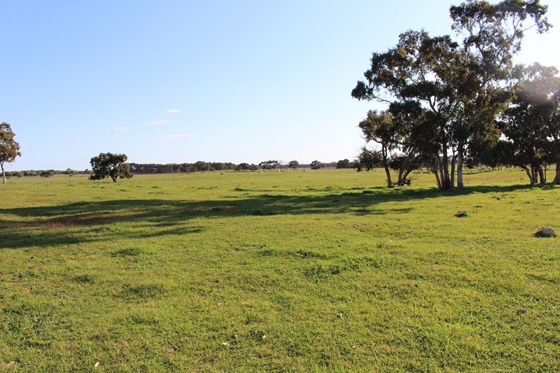 Photo of Lot 2 Naracoorte Road Lucindale, SA 5272