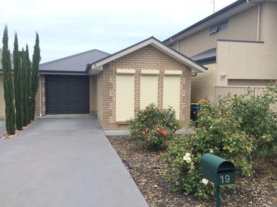19 Reece Avenue, Adelaide
