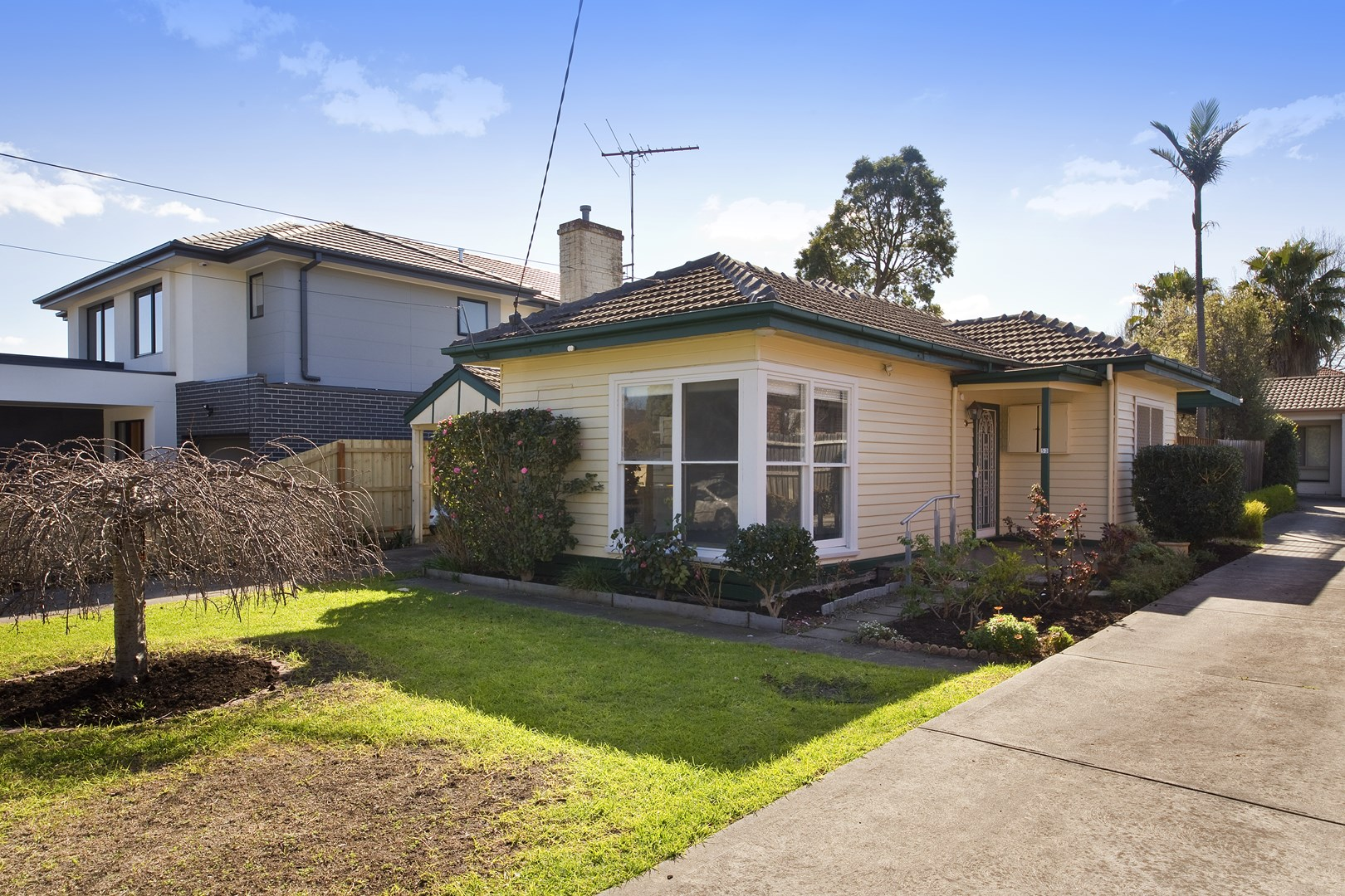 53 Wingate Street, Bentleigh East VIC 3165, Image 0
