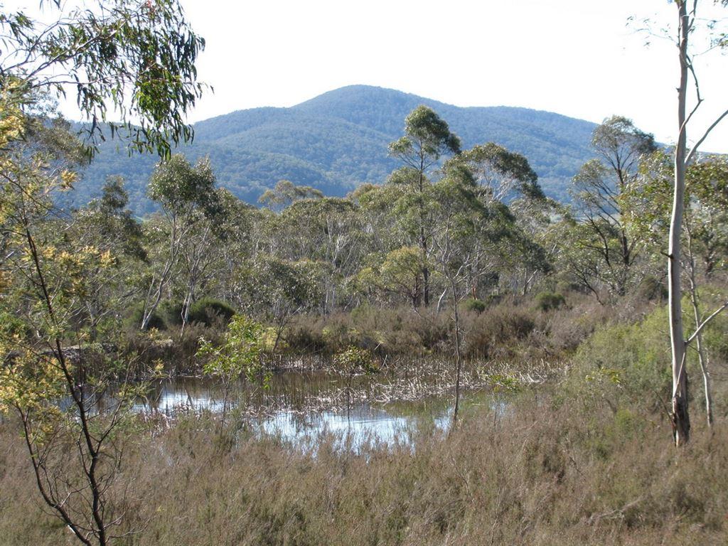 1495 Cooma Road, Braidwood NSW 2622, Image 0