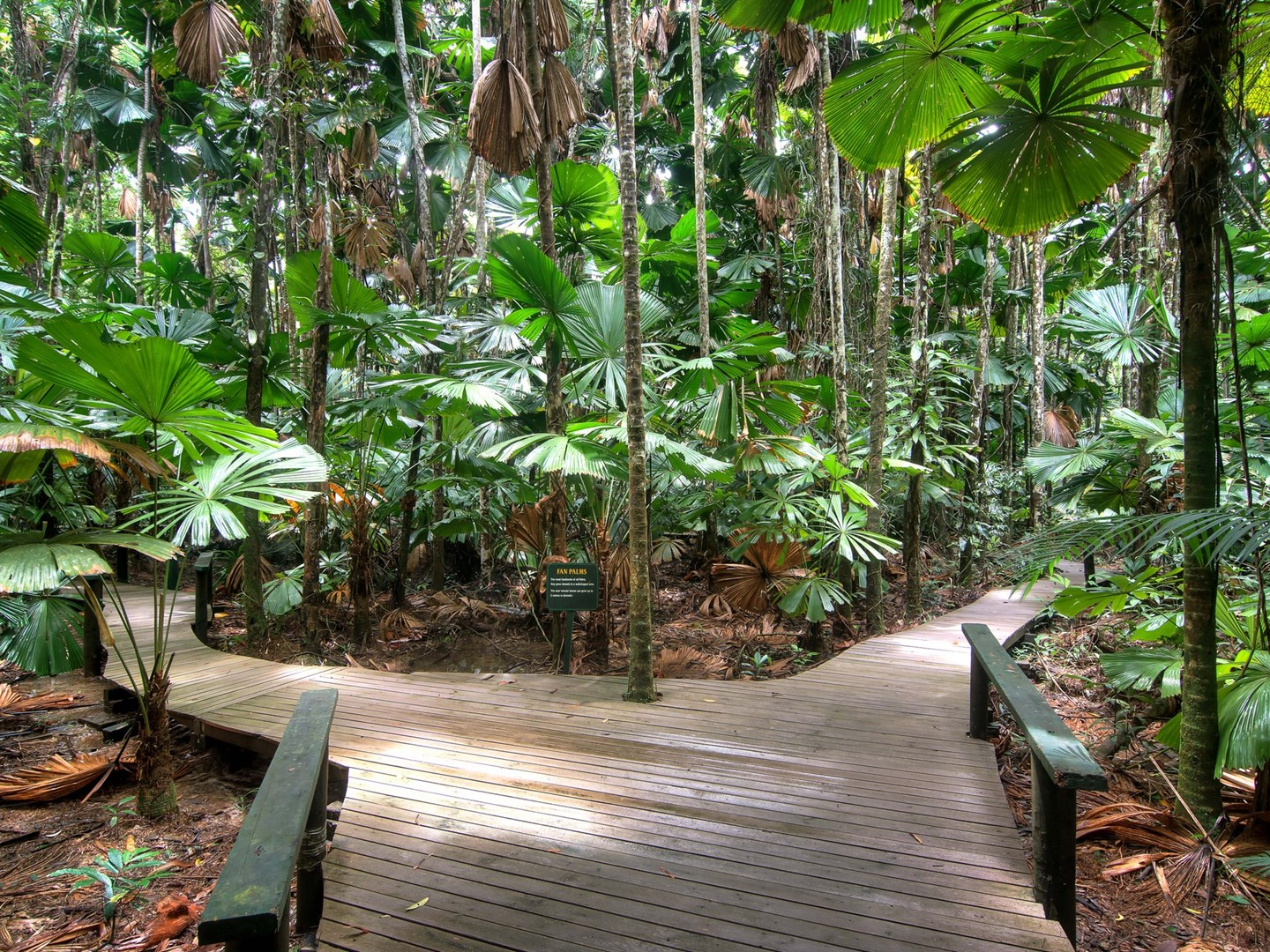 1882 cape tribulation road diwan daintree qld 4873 for Diwan queensland