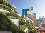 Picture of 203 Castlereagh St, Sydney