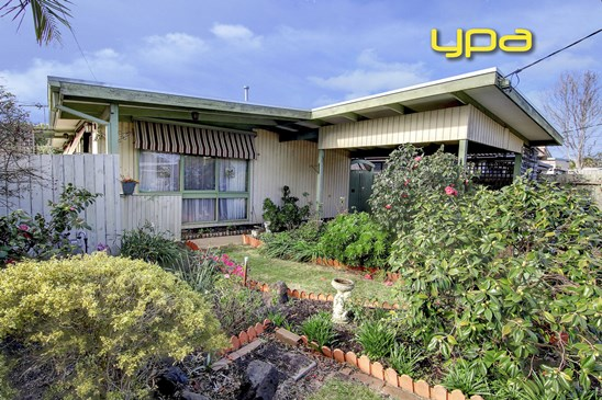 UNDER CONTRACT - TEAM YPA