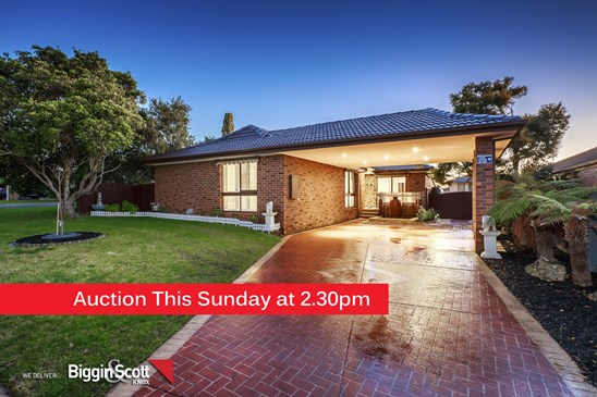 Auction This Sunday