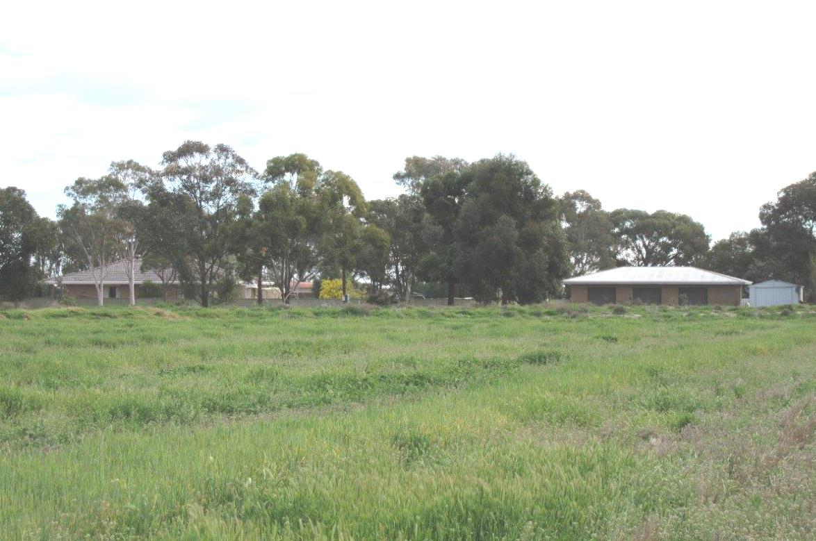 Grazing Properties For Sale Nsw