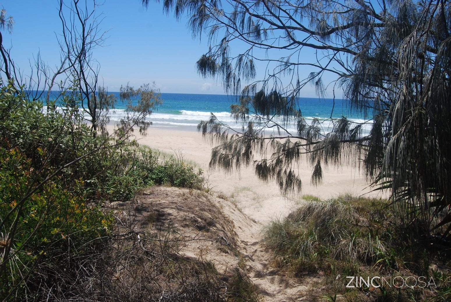 31 kestrel crescent peregian beach qld 4573 house for for 40 seaview terrace sunshine beach