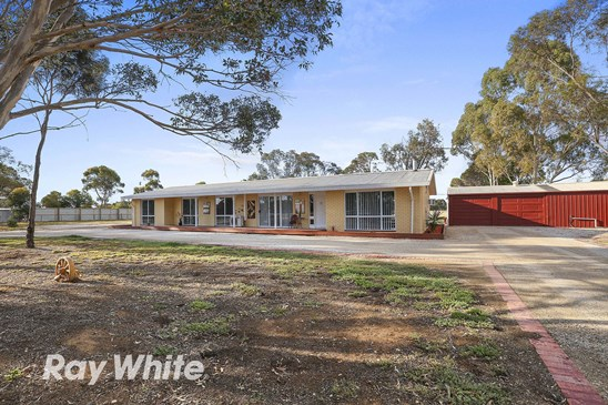 Auction - Sat 9 Dec 11am