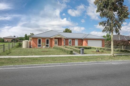 107 WILLOWBANK ROAD, Gisborne
