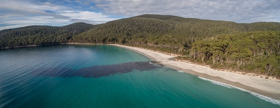 Fortescue Bay  Road, Fortescue
