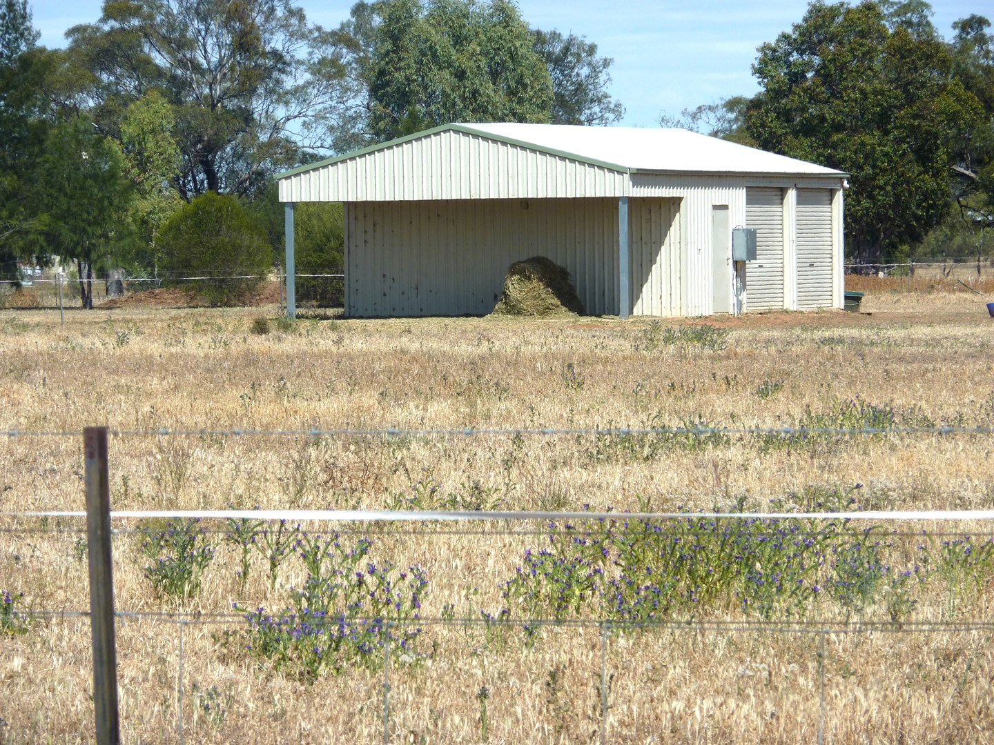 Rural Properties For Sale Gilgandra