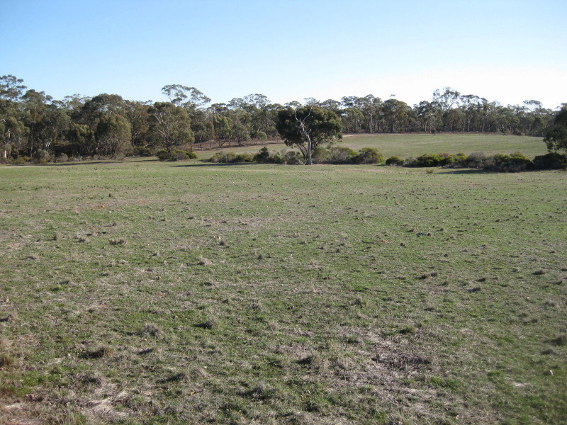 CA 5 Section 14, Wedderburn VIC 3518 - House for Sale ...