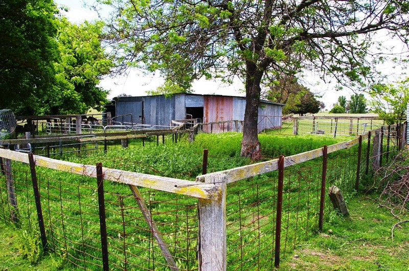 23 Commercial Real Estate Properties For Sale in Uralla, NSW 2358
