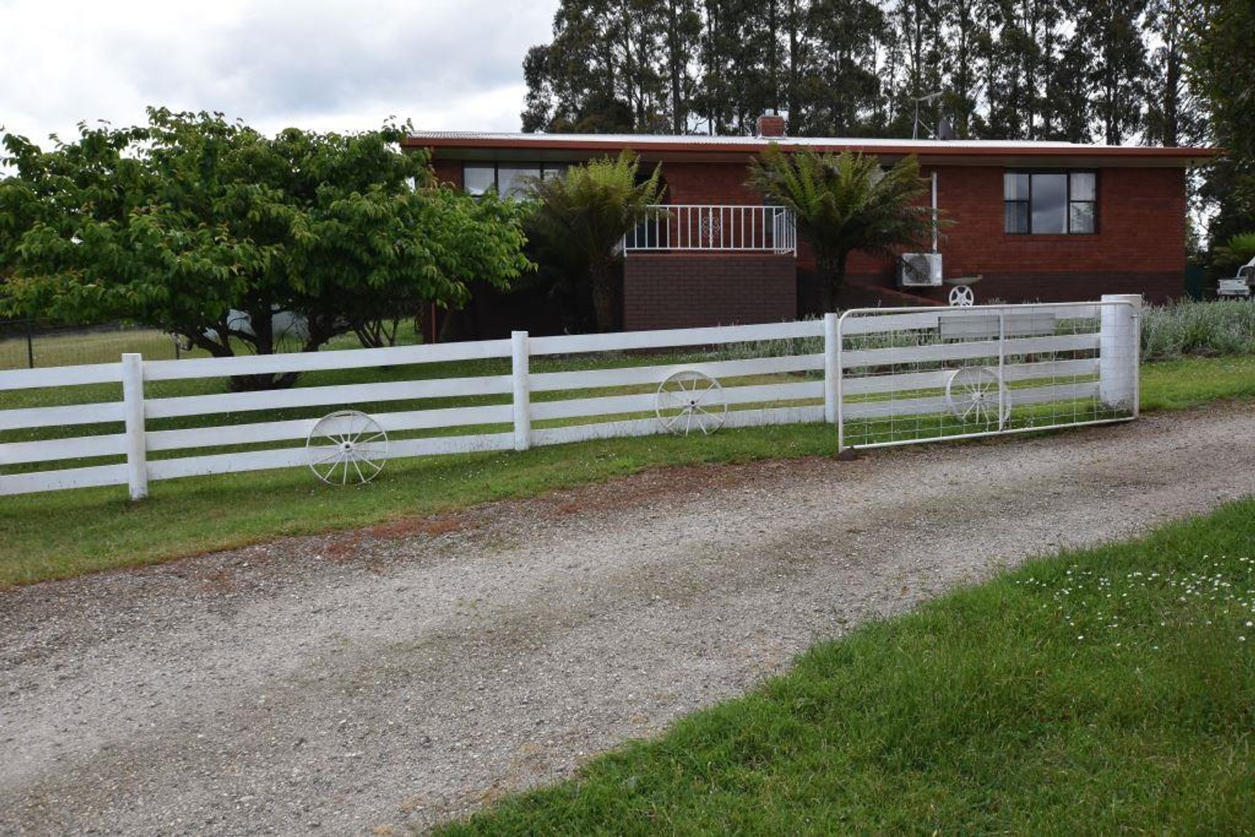 125 Wadleys Rd, Reedy Marsh TAS 7304 - House for Sale ...