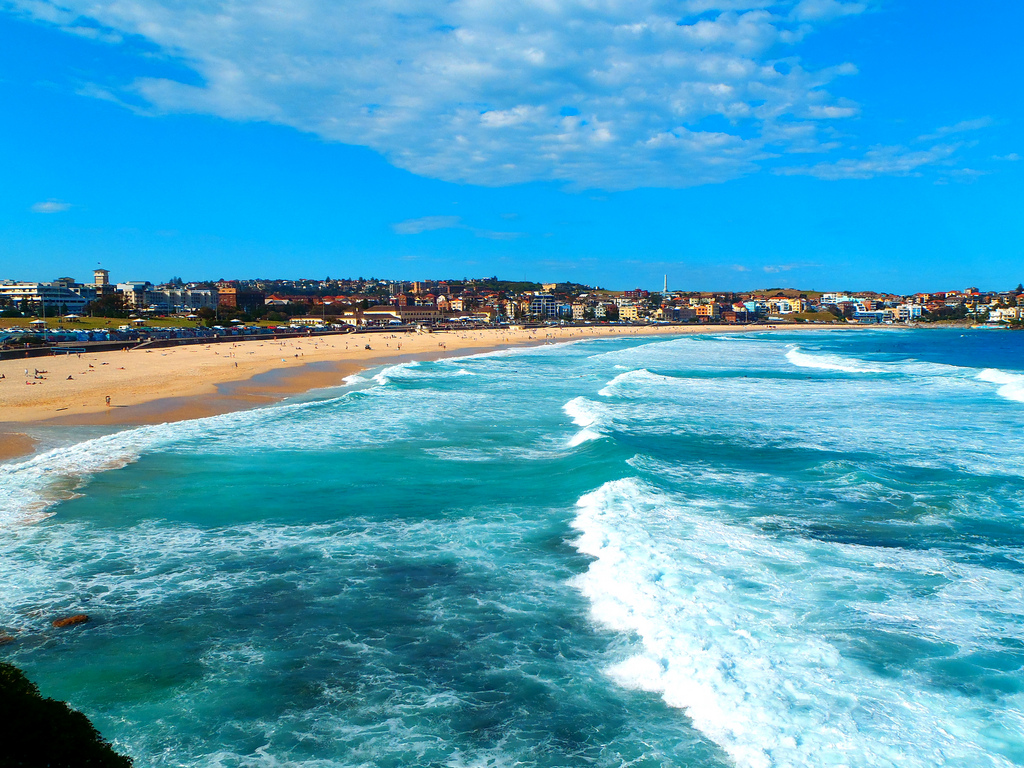 252 campbell parade  bondi beach nsw 2026 - apartment for rent