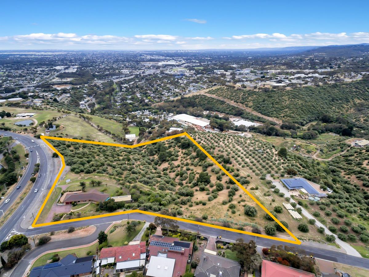 3 Bonneyview Road, Flagstaff Hill