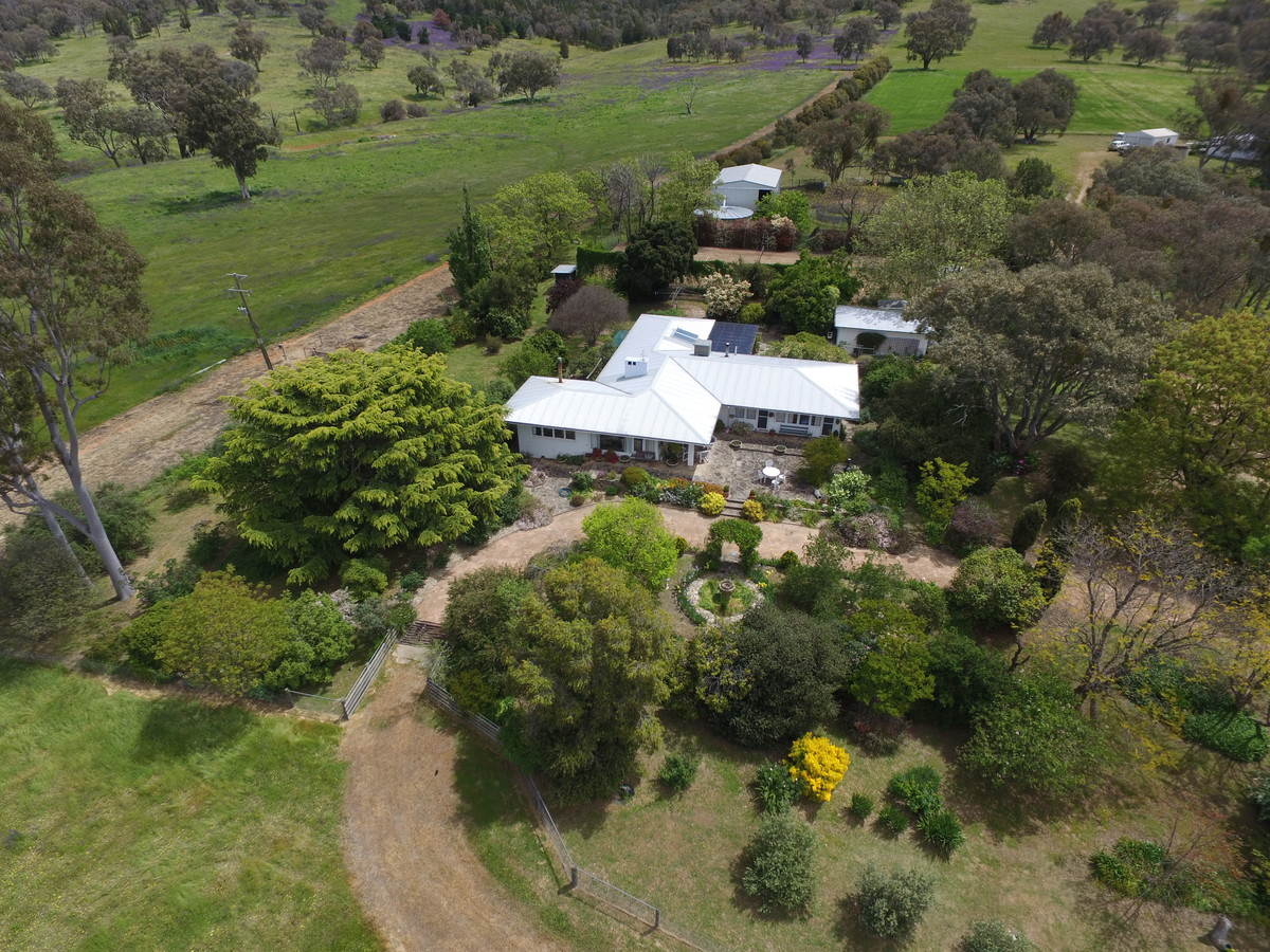 cootamundra divorced singles James hoad topic james edward hoad  representing the electorate of cootamundra   after his parents divorced,.