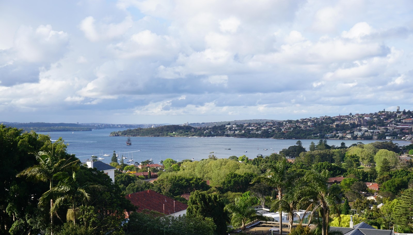 39 drumalbyn road bellevue hill nsw 2023 house for sale for Where is bellevue hill