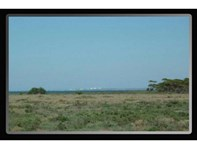 Picture of Section 198 Dune Buggy Road, Baroota