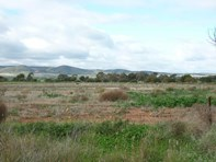Picture of Lot 521 Drovers Road, Warnertown