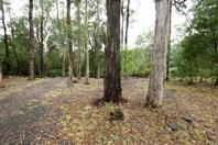Picture of 5 Blackwood Road, East Warburton