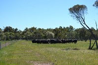 Picture of Lot 2113 Brand Highway, Gingin