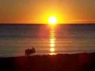Picture of Lot 357 Mount Ferguson Drive, Port Flinders