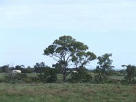 Picture of Lot 3 Port Germein Road, Port Germein