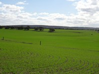 Picture of Lot 22 Chaunceys Line Rd, Monarto South