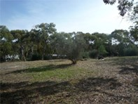 Picture of Lots 61 & 62 Adelaide North Road, Watervale