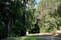 Picture of 48 Sanctuary Close, Speewah