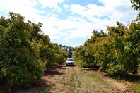 Picture of 188 Bookine Road, Gingin