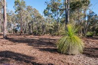 Picture of Lot 315 Falcon Way, Mount Helena