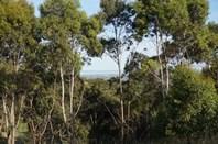 Picture of Lot 102 Range Road West, Willunga