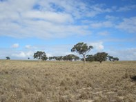 Picture of Lot 259 Harvey Road, Hartley