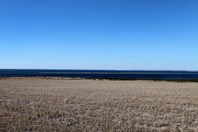 Picture of 3227 Cape Bauer Road, Streaky Bay