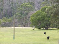 Picture of 1821 Boorara Road, Northcliffe