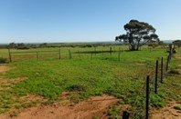 Picture of Rabbit Proof Fence Road, Mukinbudin