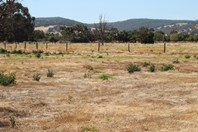 Picture of Lot 12 Lawley Road, Yarloop