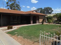 Picture of 73 Murtho Street, Renmark