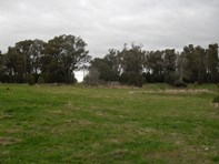 Picture of 330 Coombs Road, Kinglake West