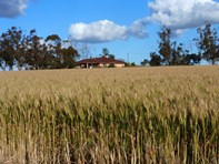 Picture of 2252 Northam-Pithara Rd, Jennacubbine